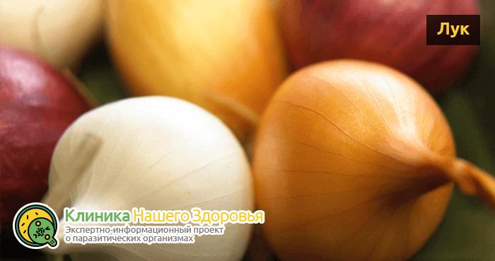 Лечение от глистов у человека: чем лечиться от гельминтов