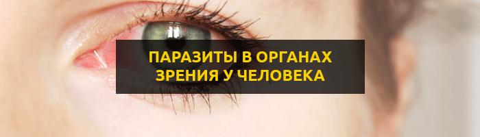 Глисты в глазах: симптомы и лечение паразитов в органах зрения