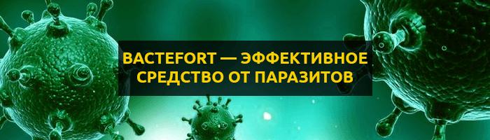 Bactefort — капли от паразитов: цена, отзывы и инструкция