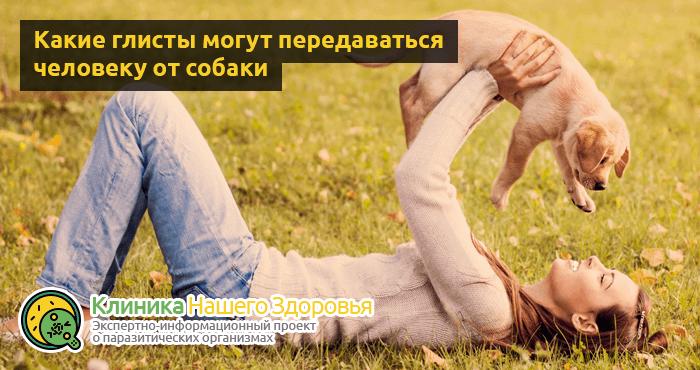 Передаются ли глисты от собаки к человеку? Можно ли заразиться?