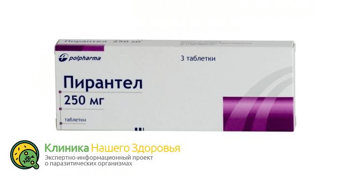 Профилактика глистов у взрослых: лекарства, таблетки и народные средства