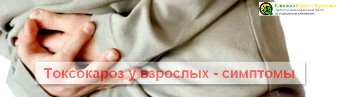Toxocara canis у человека лечение