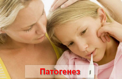 патогенез аденовирусной инфекции