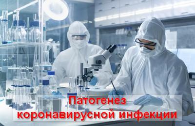 патогенез коронавирусной инфекции