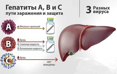 лечение гепатитов средней и тяжелой тяжести