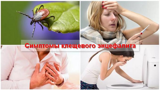 клещевой энцефалит симптомы