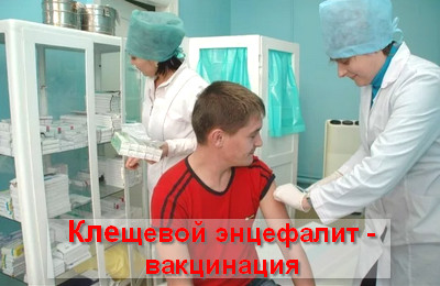 клещевой энцефалит вакцинация