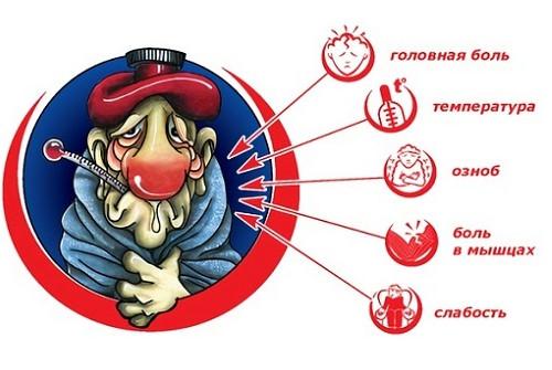 патогенез гриппа