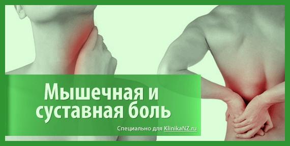 Глистная инвазия: формы, симптомы, лечение и профилактика