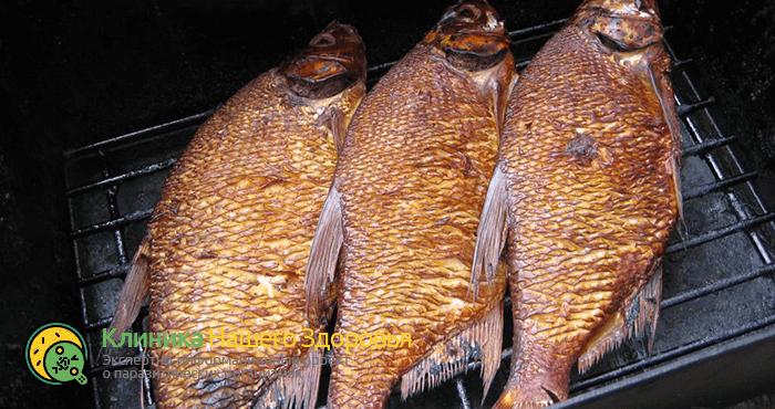 Описторхоз в рыбе: меры профилактики, признаки и полезные советы