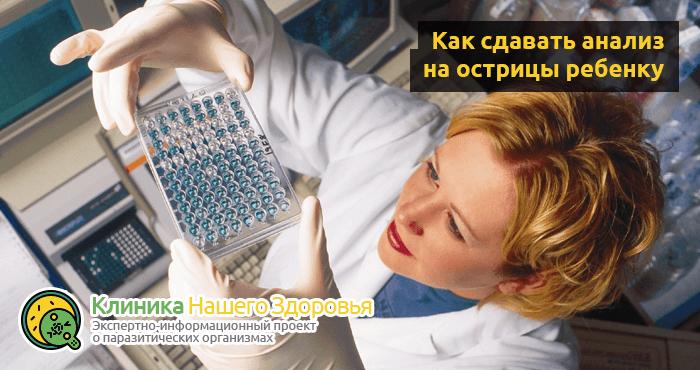 Как сдавать анализ на энтеробиоз (кал, соскоб, мазок, кровь) взрослым и детям