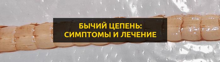Бычий цепень: как можно заразиться опасным гельминтом