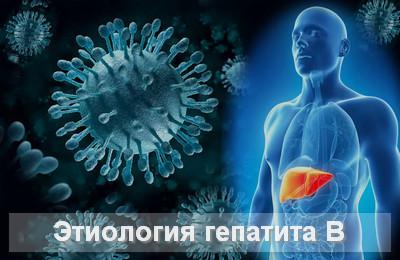 этиология гепатита В
